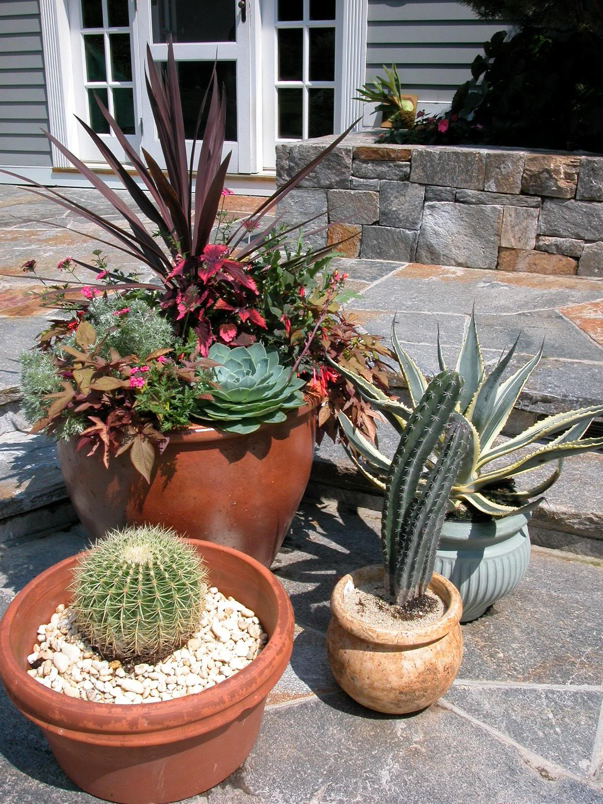 Outdoor Planters Pictures