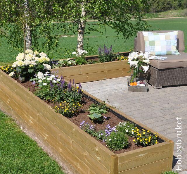 Plant Raised Flower Bed