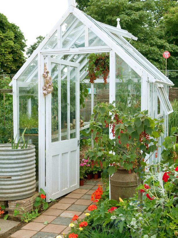 Backyard Greenhouse For Flowers