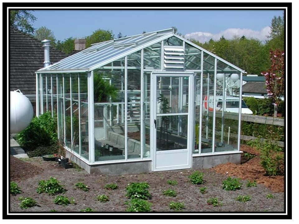Backyard Greenhouse For Vegetables