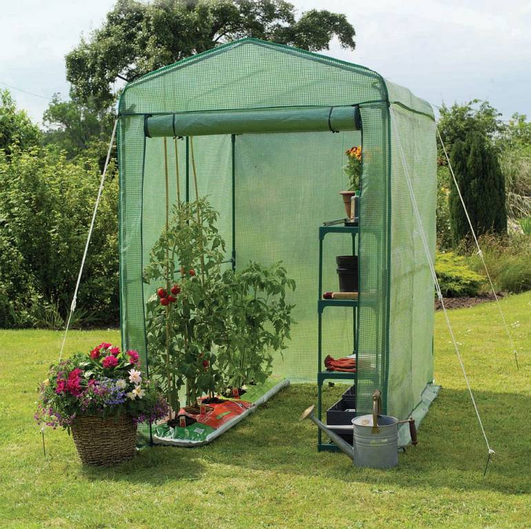 Backyard Greenhouse Innovations