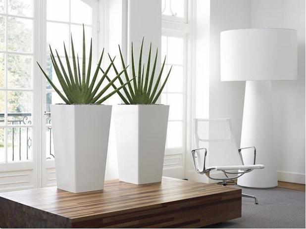 Modern Planters In Livingroom 2017