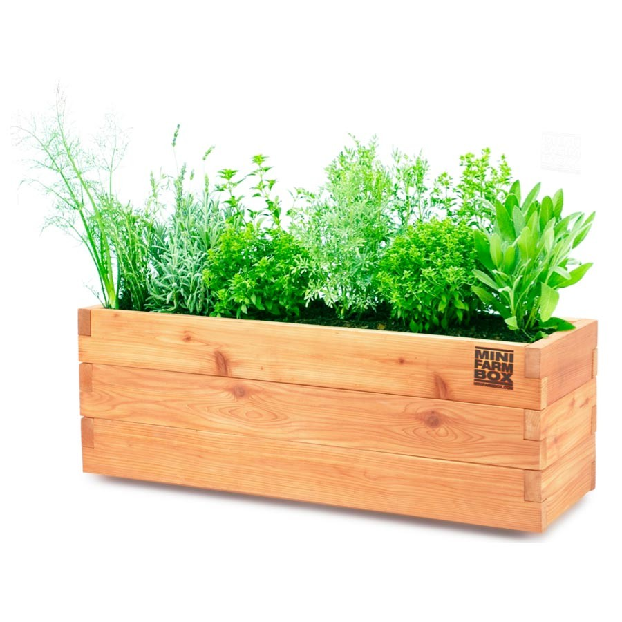 Modern Wood Planter Box