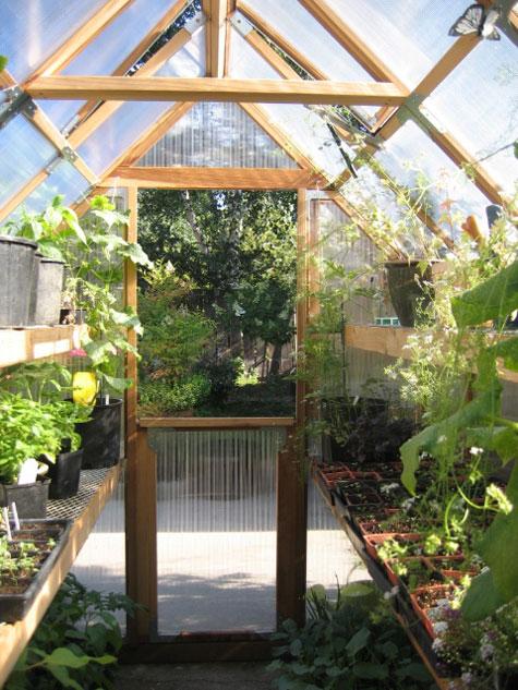Plastic Backyard Greenhouse