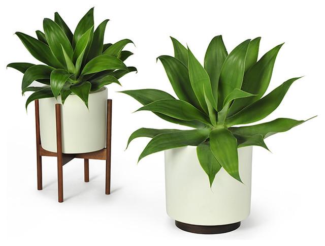 Design Contemporary Modern Planters
