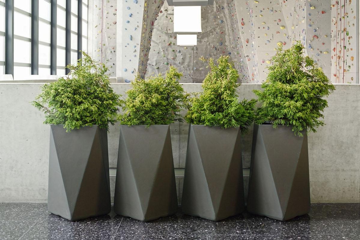 Design Indoor Modern Planters  Image