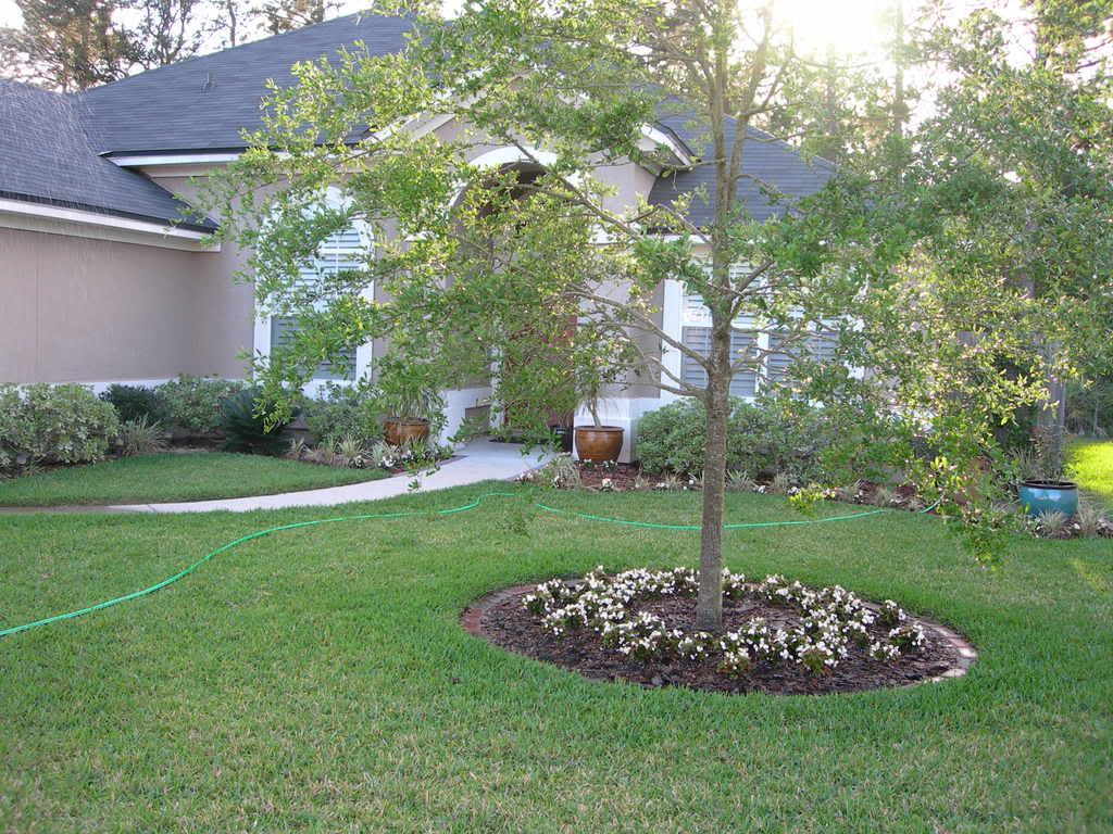 Fresh Landscape Ideas Front Yard House