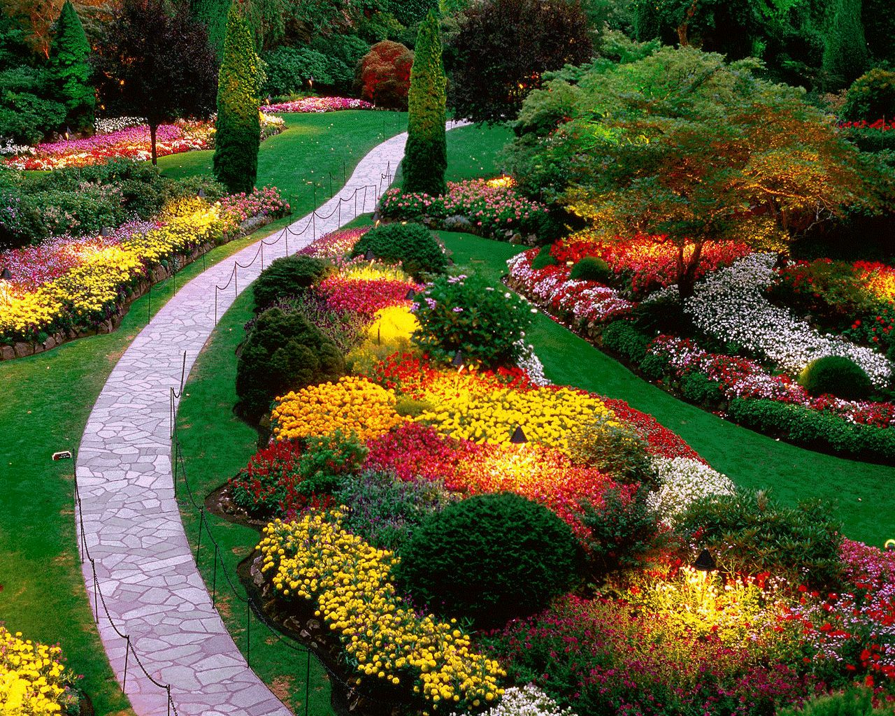 Landscape Ideas For Front Yard With Flower Plant