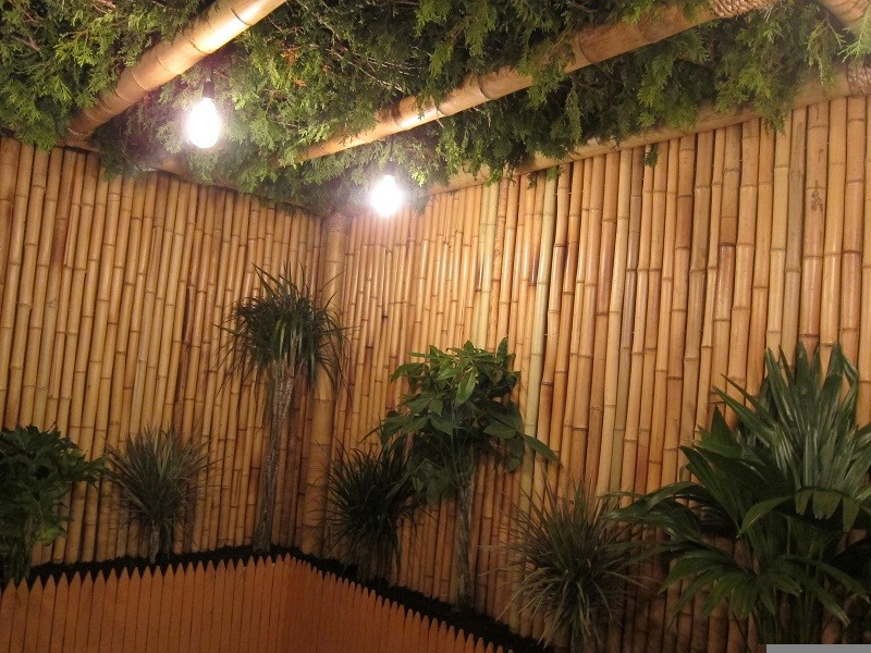 Great Bamboo Fencing
