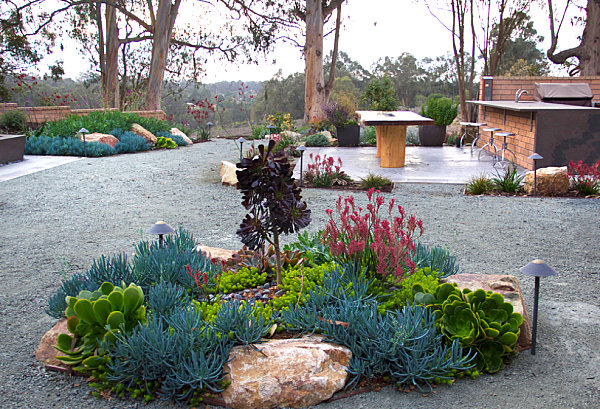About Xeriscape Front Yard