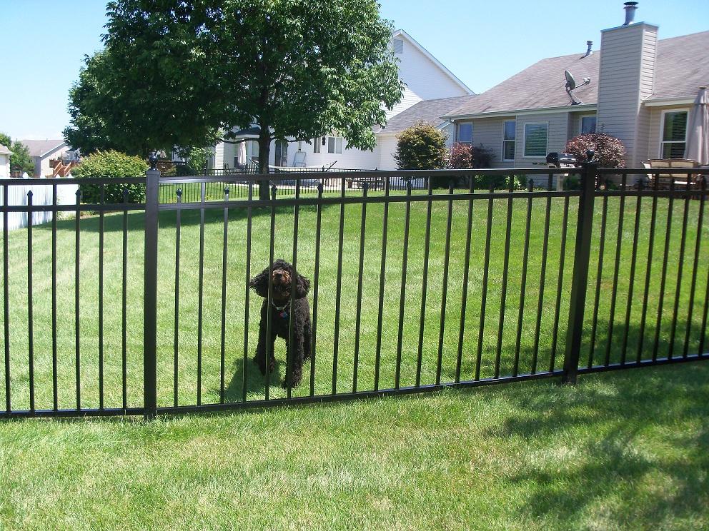 Aluminum Fencing Home