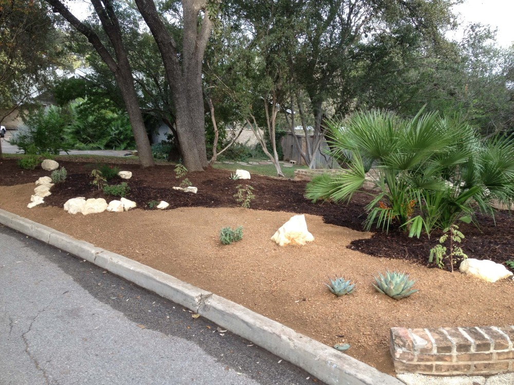 Xeriscape Front Yard Info