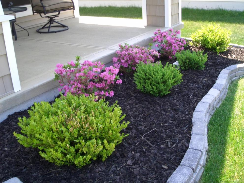 Awesome Front Yard Landscaping Plants