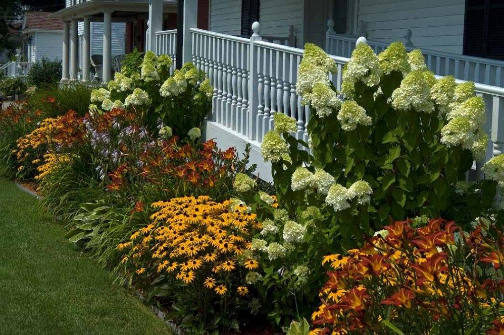 Front Yard Landscaping Plants Decorative