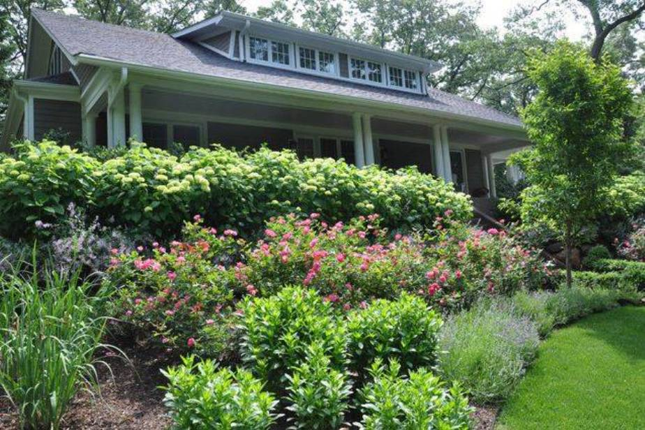 Good Front Yard Landscaping Plants