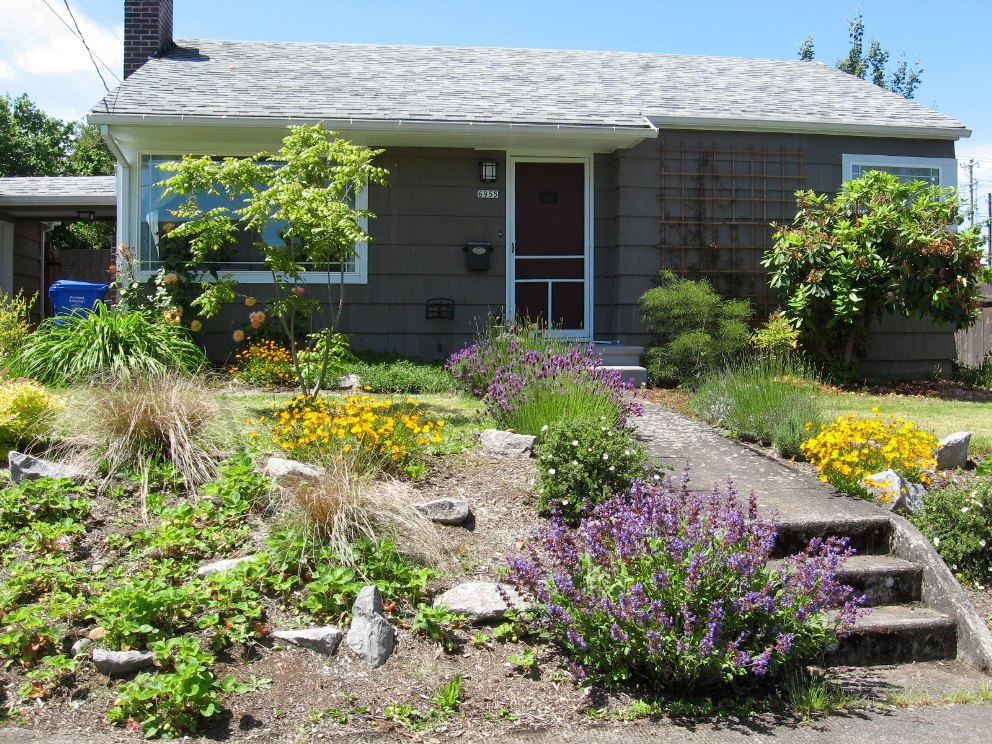 Simple Front Yard Landscaping Plants