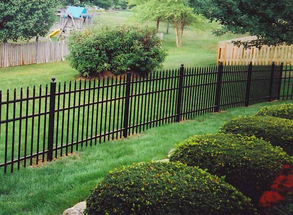 Backyard Fences For Small Dogs : Rickyhil Outdoor Ideas ...