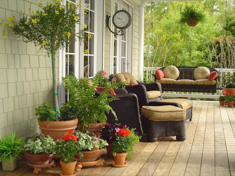 Best Plants For Front Porch Planters