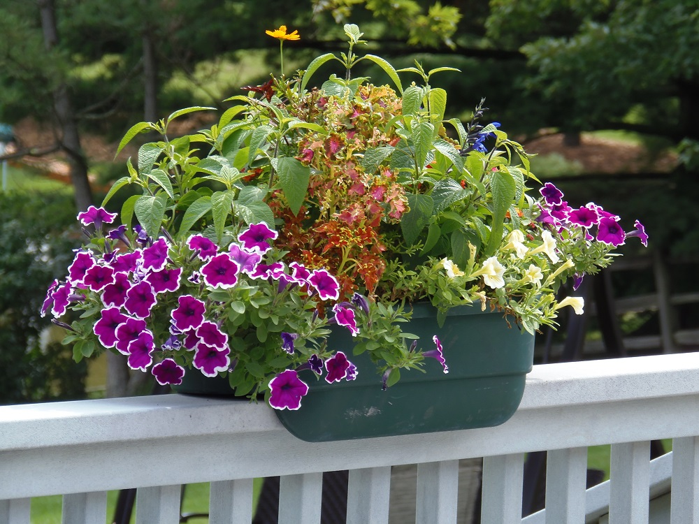 Small Deck Rail Planter