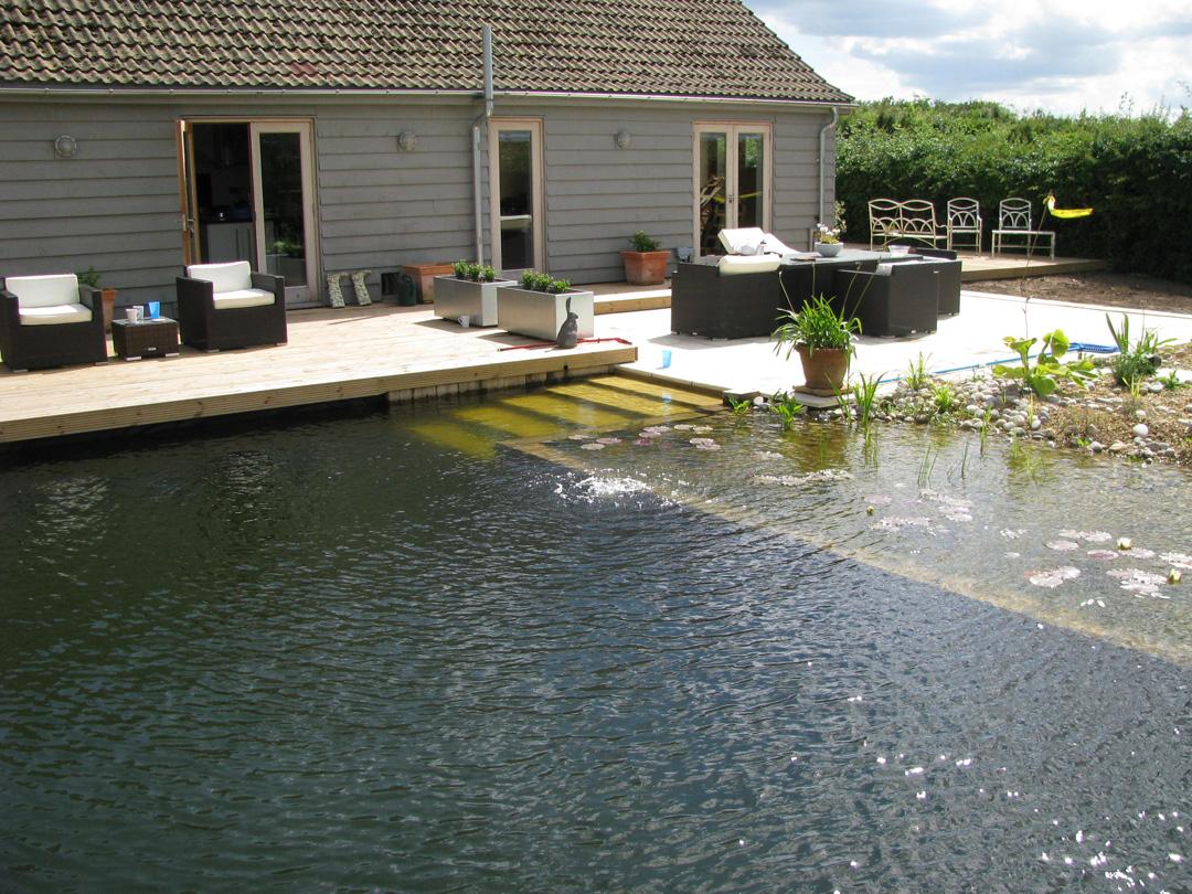 Amazing Diy Natural Swimming Pool
