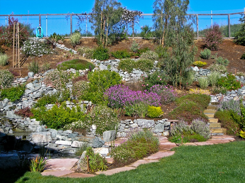 Hillside Landscape Ideas Rock : Rickyhil Outdoor Ideas ...