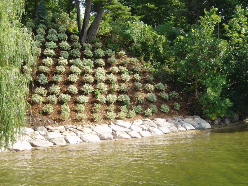 Hillside Landscape Ideas With Rock Rickyhil Outdoor