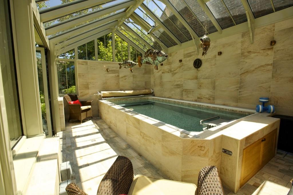 Endless Pool Swim Spa Rickyhil Outdoor Ideas