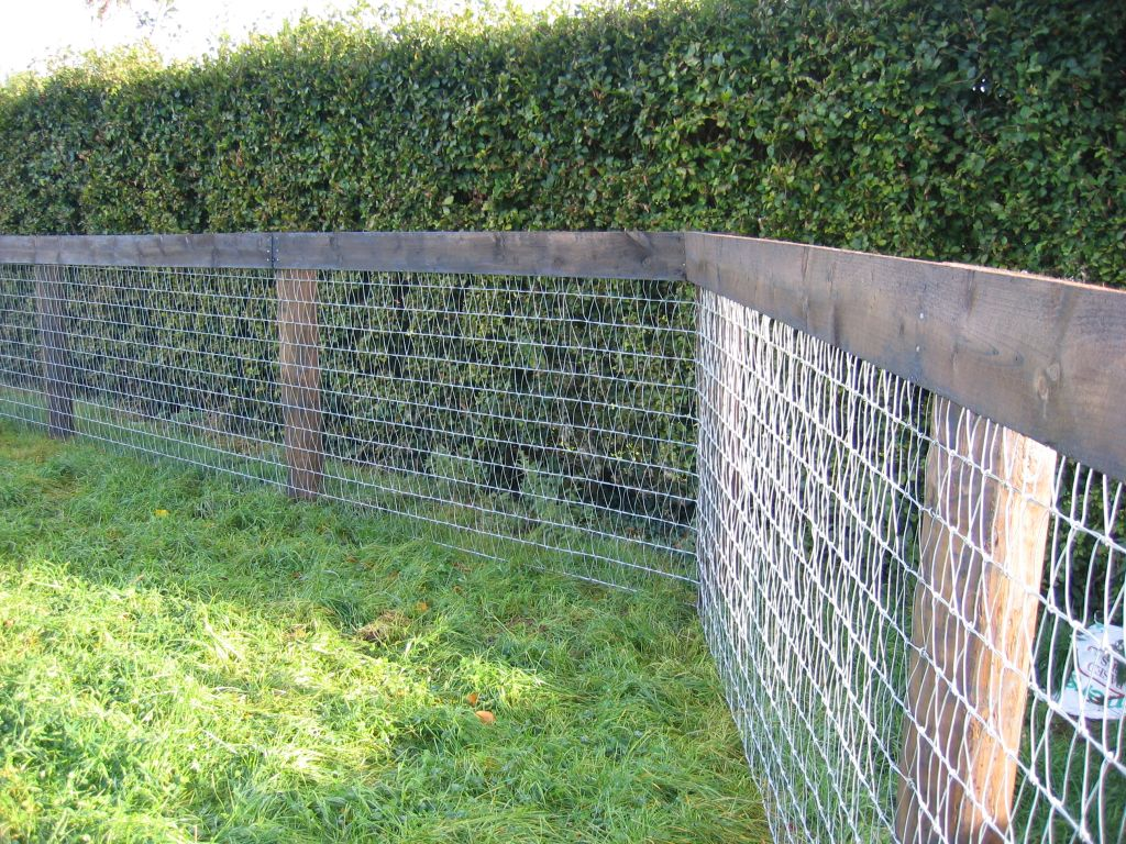 Mesh Fencing Garden