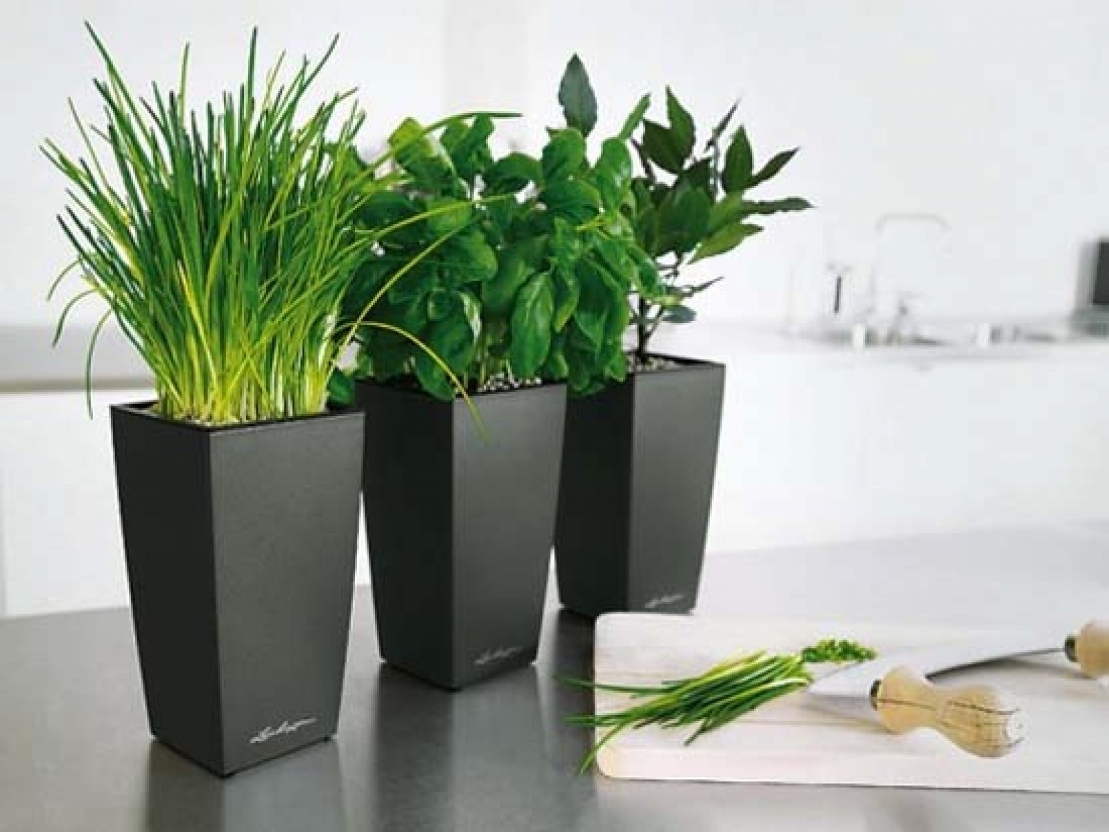 Awesome Flower Pot Painting Ideas