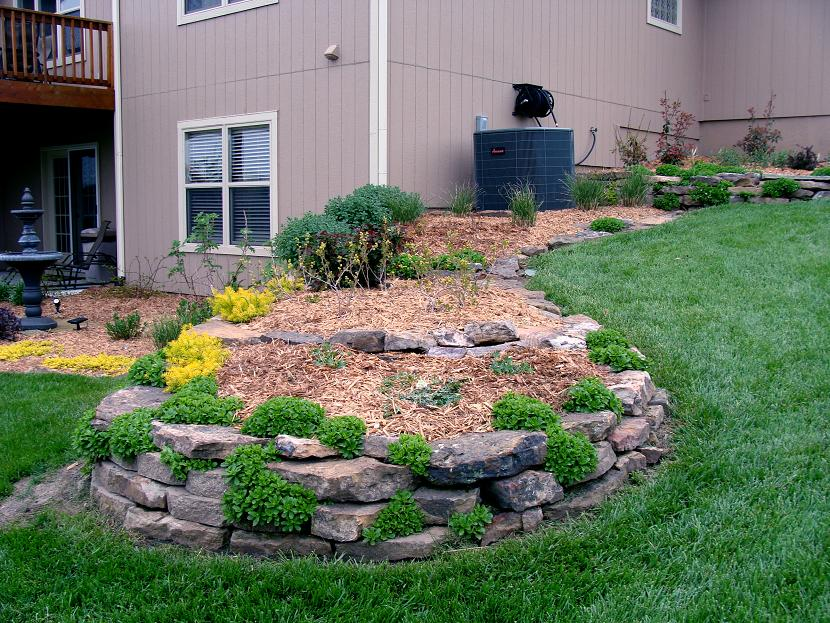 Easy Low Maintenance Landscaping Ideas : Rickyhil Outdoor ...