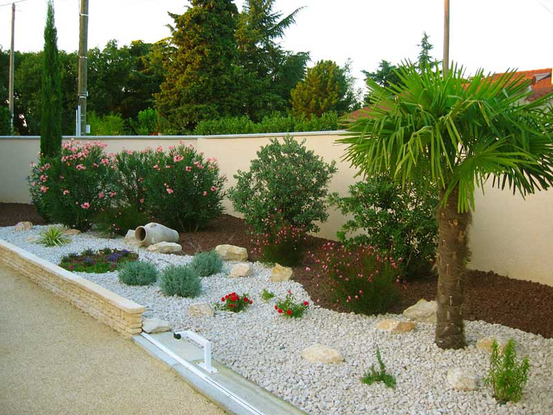 Low Maintenance Front Lawn Landscaping Ideas Rickyhil Outdoor