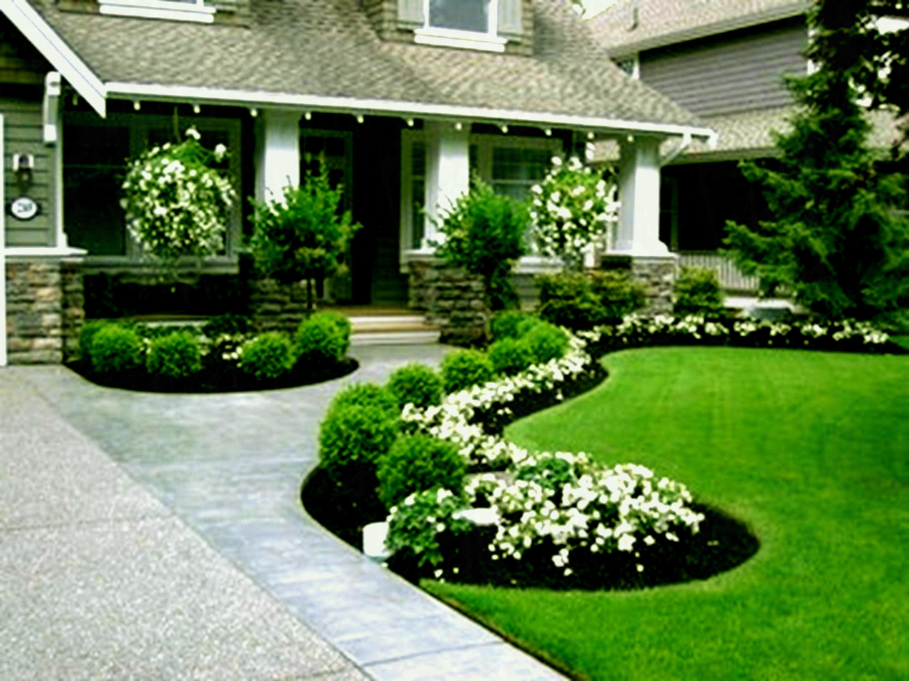 Low Maintenance Landscaping Ideas For Small Yards ... on Small Yard Landscaping Ideas id=46461